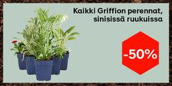 Tarjouksia yritykseltä Plantagen kaupungissa Helsinki lehtisiä