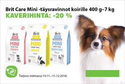 Tarjouksia yritykseltä Musti ja Mirri kaupungissa Helsinki lehtisiä