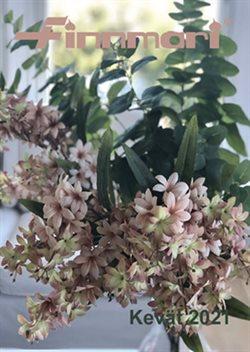 Tarjouksia yritykseltä kukka kaupungissa Finnmari lehtisiä ( 13 päivää jäljellä)