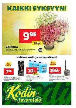 Tarjouksia yritykseltä Supermarket kaupungissa Kodin Tavaratalo lehtisiä ( Vanhenee pian)