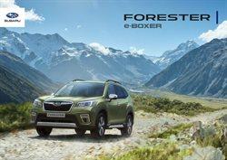Subaru luettelo, ( Yli 30 päivää )