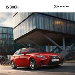 Lexus luettelo, ( Yli 30 päivää )
