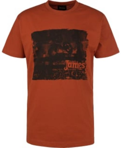 James Alford Miesten T-paita -tarjous hintaan 14,95€
