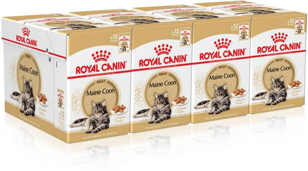 Royal Canin Maine Coon, 85 g, 48-PACK -tarjous hintaan 49,9€